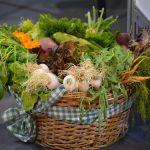 Organska poljoprivreda se širi u EU i Srbiji