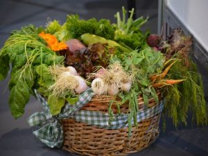 organsko povrće 2