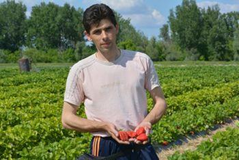 Antonel Bugar proizvođač jagoda