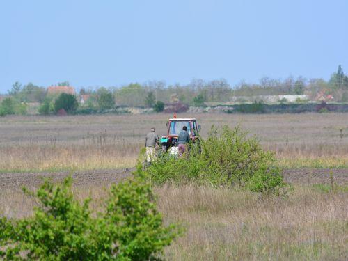 paori na traktoru