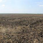 Sačuvajmo plodnost zemljišta! Ljuštimo, a ne palimo strništa.