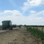 Zrenjanin izdvaja za agrar 350 miliona dinara