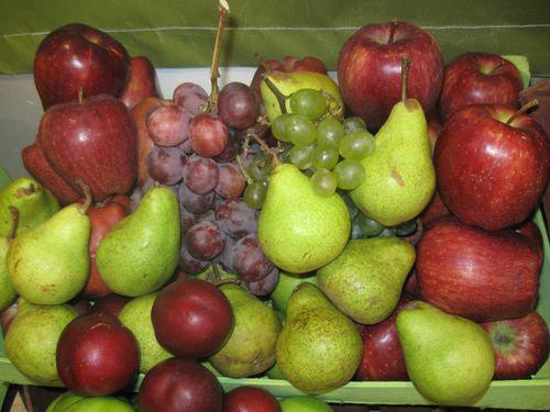 U fabriku za preradu voća u Arilju zajedno ulažu Srbija i Mađarska
