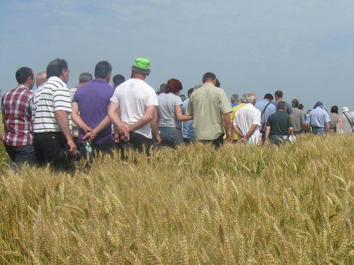 Finansiranje udruženja u oblasti poljoprivrede i ruralnog razvoja