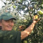 Dama koja proizvodi voće, Petruša Ivanov