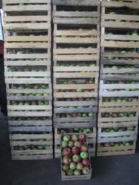 gajbice pune jabuka