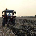 Kisela zemljišta i kako da ih popravimo