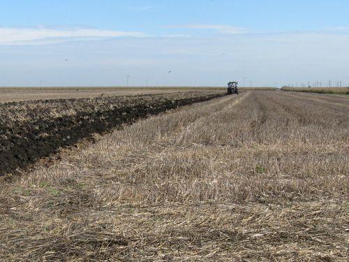 Zašto je važno merenje pH vrednosti u zemljištu i rastvorima đubriva za rast biljaka