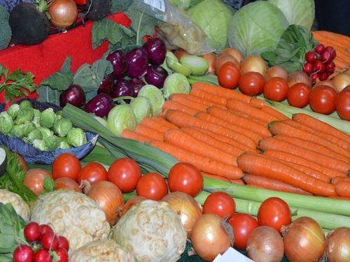Radojević: Obezbediti preduslove za proizvodnju zdrave hrane
