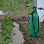 Fungicidi (sumpor, bakar, ulja i bikarbonati) u organskoj proizvodnji