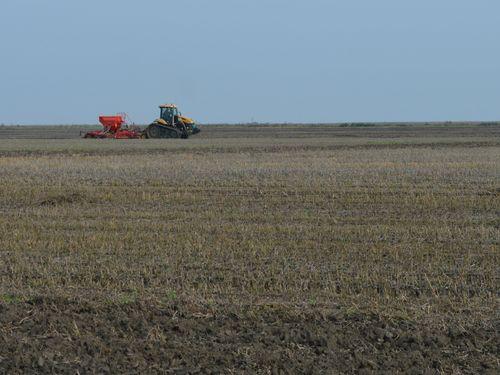 Kako se ponašaju fosforna đubriva u zemljištu zavisno od pH vrednosti tla
