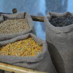 Predeklarisano seme – pročitajmo deklaraciju