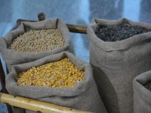 semena u dzakovima