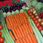 """Savetovanje """"Savremena proizvodnja povrća"""" u Novom Sadu 3. decembra"""