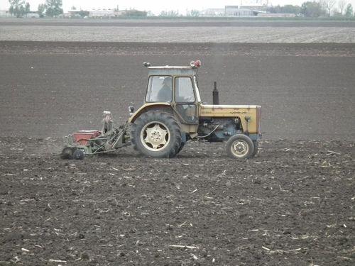 Read more about the article Predsetvena priprema zemljišta za setvu kukuruza