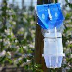 Šta su feromoni i kako se koriste u poljoprivredi za zaštitu biljaka?