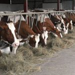 Izmene Zakona o podsticajima u poljoprivredi i ruralnom razvoju