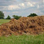 Stajnjak je značajan i za zemljište i za biljke