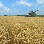 Za kupovinu poljoprivrednog zemljišta krediti Razvojnog fonda Vojvodine