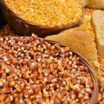 Pšenica 18 din/kg, a kukuruz 16 din/kg