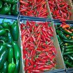 Kako sprečiti viroze u usevu paprike