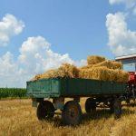 Objavljena Uredba o raspodeli podsticaja u poljoprivredi i ruralnom razvoju u 2018.