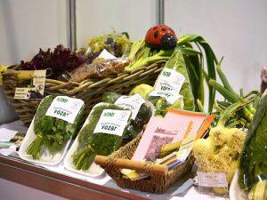 organsko povrce 3
