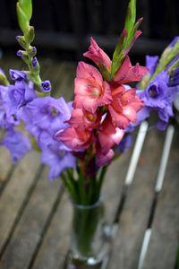 gladiola vaza