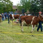 Podsticaji za promotivne aktivnosti u poljoprivredi i ruralnom razvoju