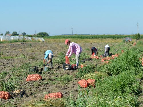 Usvojen zakon kojim se poboljšava položaj sezonskih radnika