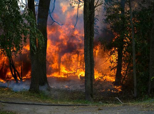 Sačuvajmo šume! Poštujmo zakon i ne palimo vatru na otvorenom osim na obeleženim mestima