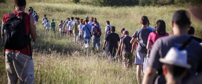 Read more about the article Julski smiraj dana u Deliblatskoj peščari