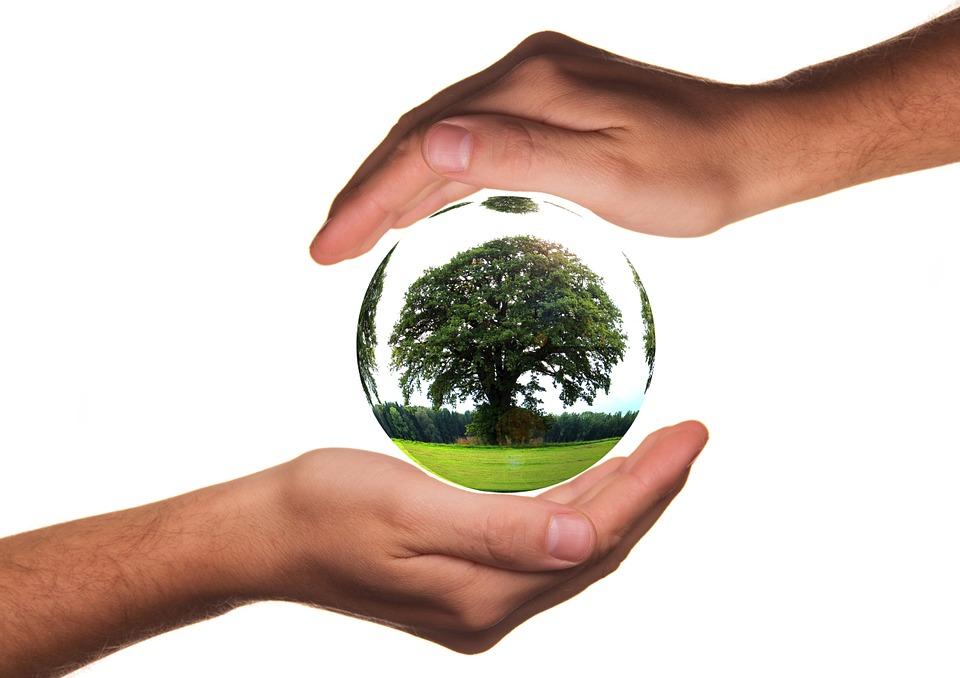 Za 50 projekata u oblasti zaštite životne sredine 20 miliona dinara