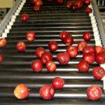 Konkurs: Sredstva za opremanje manjih hladnjača za voće i povrće
