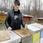 Novembar i decembar na pčelinjaku