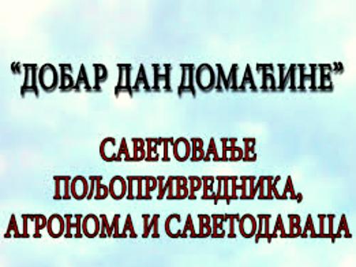 """""""Dobar dan domaćine"""" u Novom Sadu 9. i 10. februara – najava i program"""