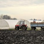 Poziv za subvencionisanu nabavku traktora je objavljen – Zahtev predati od 10. 4. do 19.5.