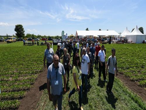Read more about the article BASF održao Dan polja u Pančevu