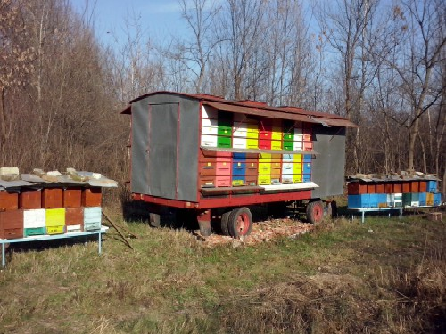 Još jedna krađa košnica u okolini Pančeva! SPOS: Sprečimo krađe pčela