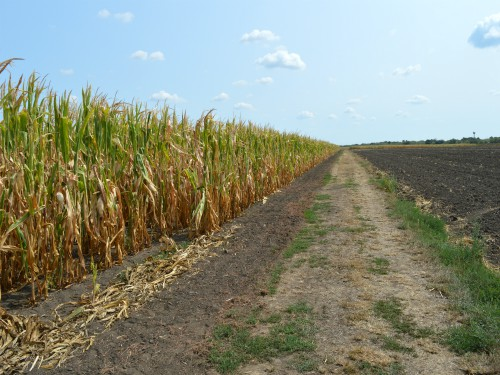 Konkurs RFV za odobravanje kredita za kupovinu zemljišta još traje
