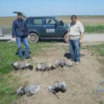 Platio 400.000 dinara zbog trovanja ždralova