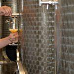 Anaerobne bolesti vina – kako ih sprečiti i lečiti