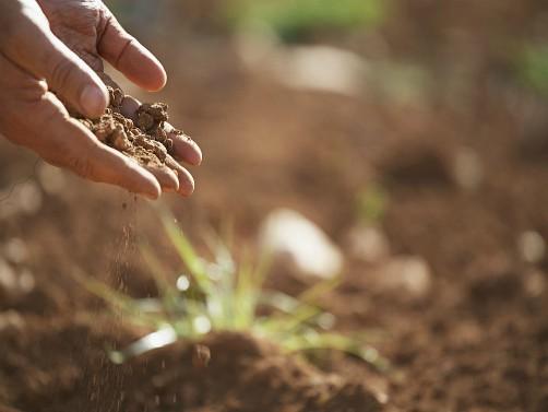 Smanjite troškove i povećajte prinose kvalitetnom analizom zemljišta i preporukom za đubrenje