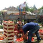 Konkurs za podršku mladim poljoprivrednicima