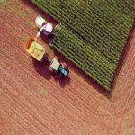 Banca Intesa: Šesti unapređeni godišnji ciklus Intesa Farmer konkursa