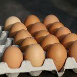 Proizvođači jaja traže proširenje IPARD II