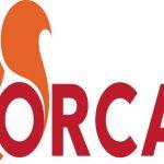 ORCA poziva donatore: Napravimo Ljubinkin legat