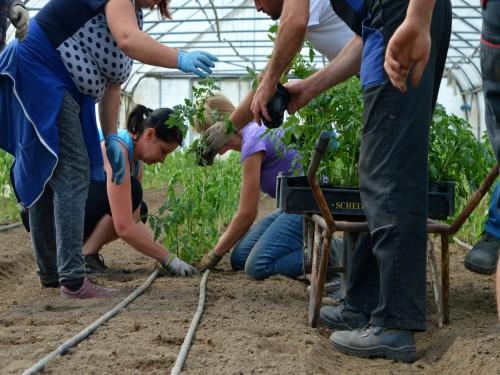 Lista proširena, pa pravo na subvencije ima 3.000 mladih poljoprivrednika