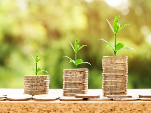 Skup o finansiranju poljoprivrede u 2021. godini onlajn