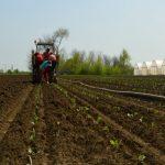 Obuka za pokretanje posla u poljoprivredi za korisnike socijalnih programa
